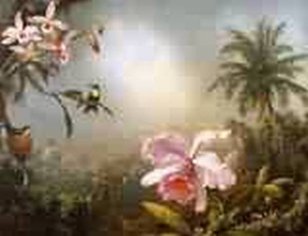 Orchids Nesting Hummingbirds and a Butterfly 1871jpeg